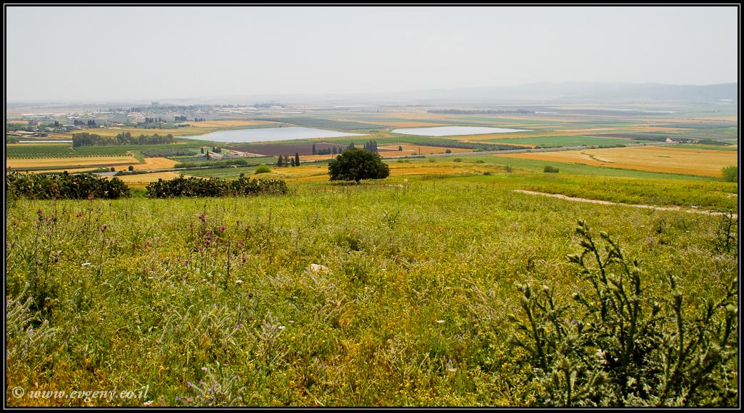 Парк Бейт Шеарим |Beit Shearim | LookAtIsrael.com - Фото путешествия по Израилю