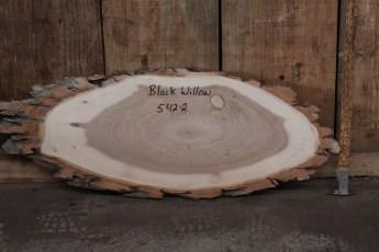 """542 Black Willow -1  1""""x 35"""" Max Dia  x 13"""" Min Dia"""