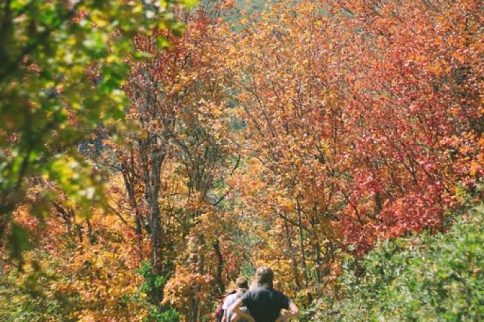 fall hiking in utah (26)