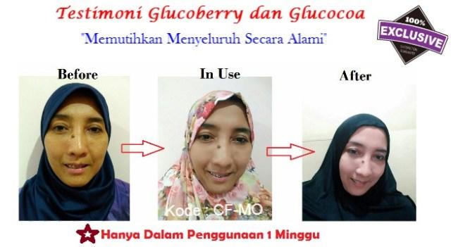 Glucoberry dan Glucocoa di Apotik