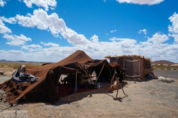 sahara desert-17