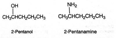 nomenclature of amine