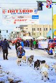 Iditarod2015_0277.JPG