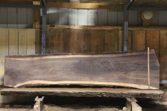 "607 Walnut - 13 5/4 x 33"" x 24"" Wide x  10'  Long"