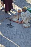 Marrakech par le magicien mentaliste Xavier Nicolas Avril 2012 (237).JPG
