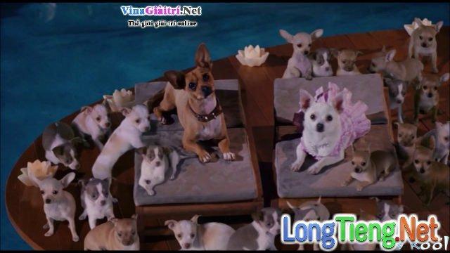 Xem Phim Những Chú Chó Chihuahua Ở Đồi Beverly - Beverly Hills Chihuahua - phimtm.com - Ảnh 3