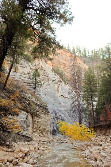 Hiking Zion National Park Utah.