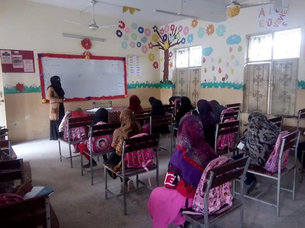The Exclusion of the Chapter on Out-of-School Children in the Latest Pakistan Education Statistics Report Requires Immediate Redressal: Education Champion Network