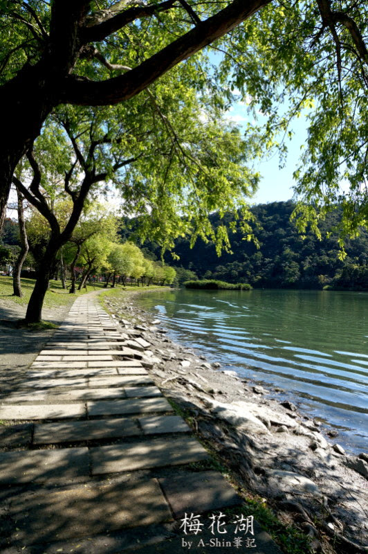 梅花湖|騎車、搭船任你挑,梅花湖會讓你愛上~環境清幽的好地方,超悠哉der~