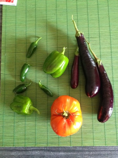 Peppers eggplant tomato from garden