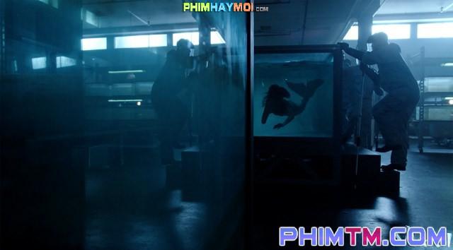 Xem Phim Nhân Ngư 1 - Siren Season 1 - phimtm.com - Ảnh 1