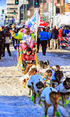 Iditarod2015_0399.JPG