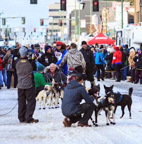 Iditarod2015_0270.JPG