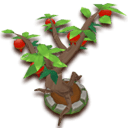 PomegranateTree.png.png
