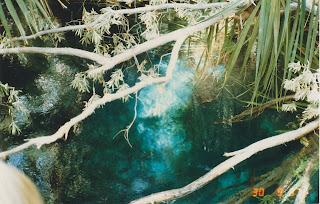 1465Mataranka Springs