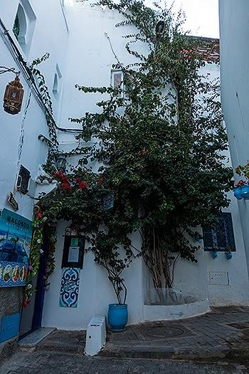 Tangier38.jpg