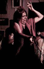 destilo flamenco 28_112S_Scamardi_Bulerias2012.jpg