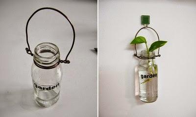 bình trồng cây
