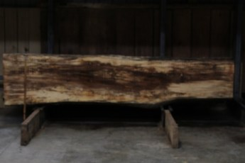 """610 Maple Spalted - 2 10/4x 27"""" x 22 Wide x  10'  Long"""
