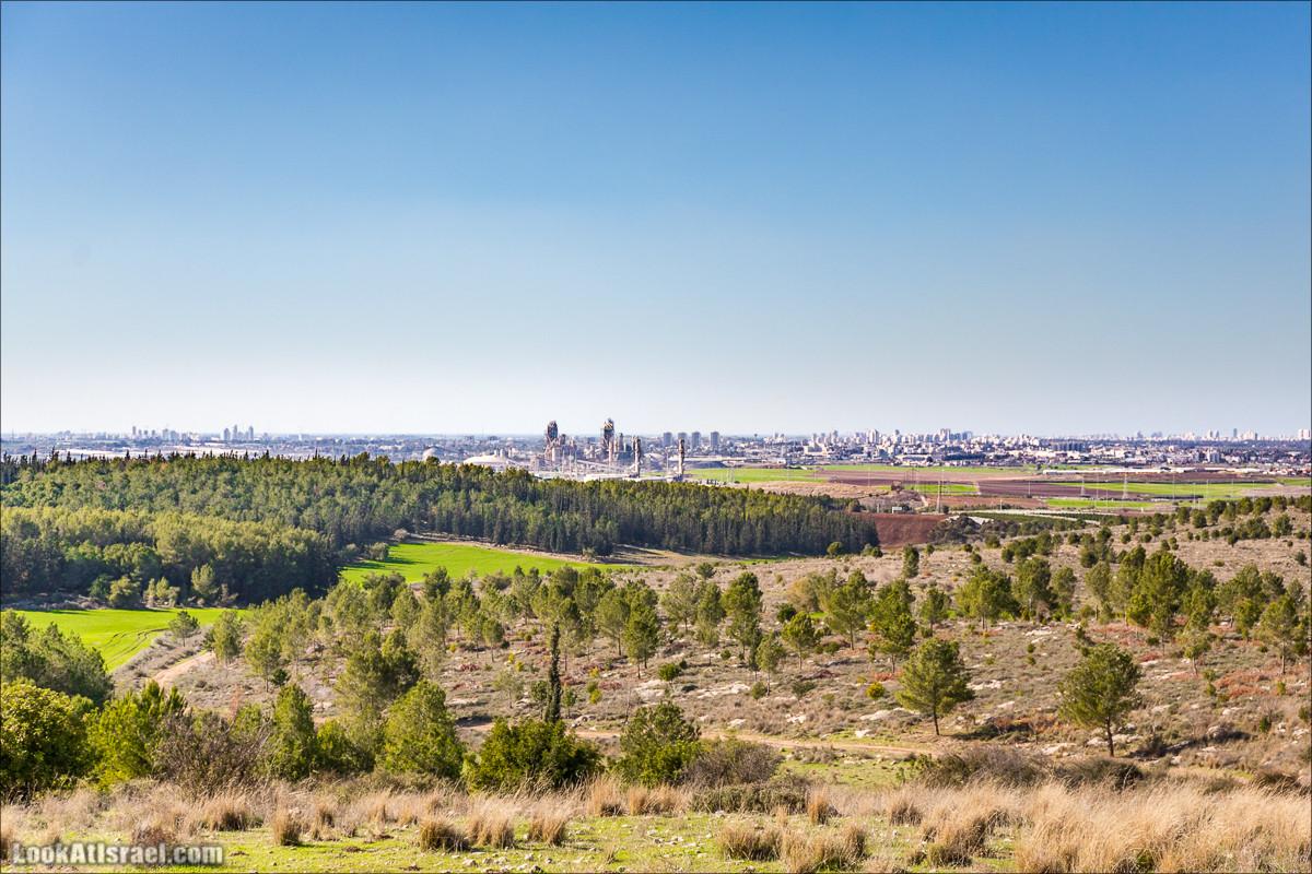 По лужам и кочкам леса Бен-Шемен | Ben Shemen Forest Muds and Hills | LookAtIsrael.com - Фото путешествия по Израилю