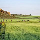 Trail Batalla de Alarcos (11-Abril-2015)