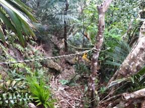 道を歩くより崖を登る時間の方が長い道程