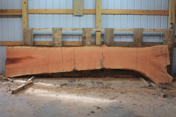 Cherry 305-9  Length 15', Max Width (inches) 45 Min Width (inches) 26 Thickness 10/4  Notes : Kiln Dried