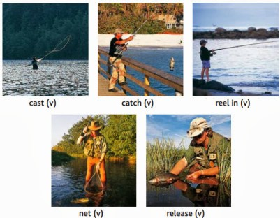activities- cast, catch, reel in, net, release