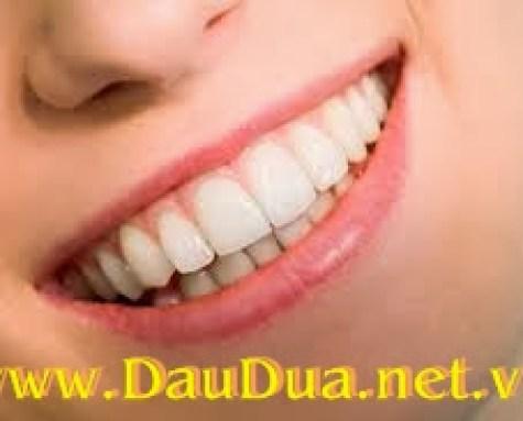 Sử dụng tinh dầu dừa ngừa sâu răng hiệu quả và an toàn