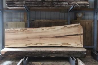 "576  Ambrosia Maple -6 10/4x 40"" x 31"" Wide x  10'  Long"