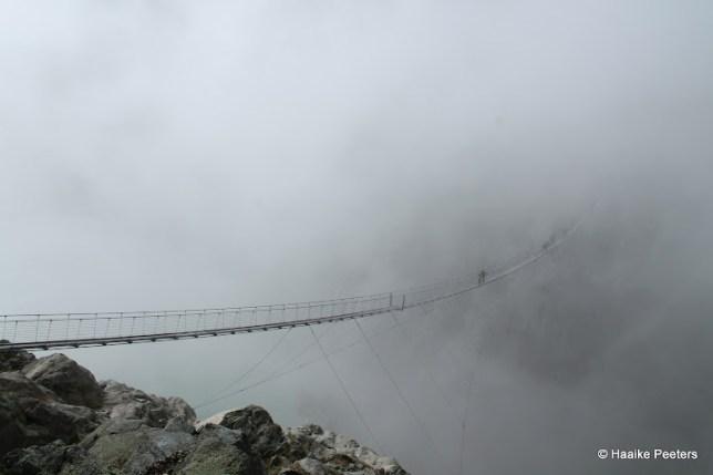 Triftbrücke (Le petit requin)