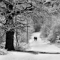 Set 3rd - Snow Stroll_Jaffer Bhimji LRPS.jpg