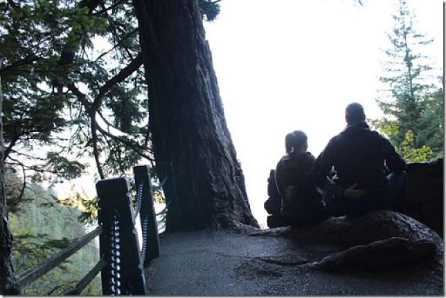 Domesticability Oregon Trip Mt. St Helens Haystack Rock Tidepools_-36