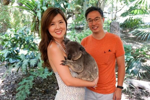 澳洲抱樹熊