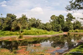 Humedal Biorefugio Zasqua