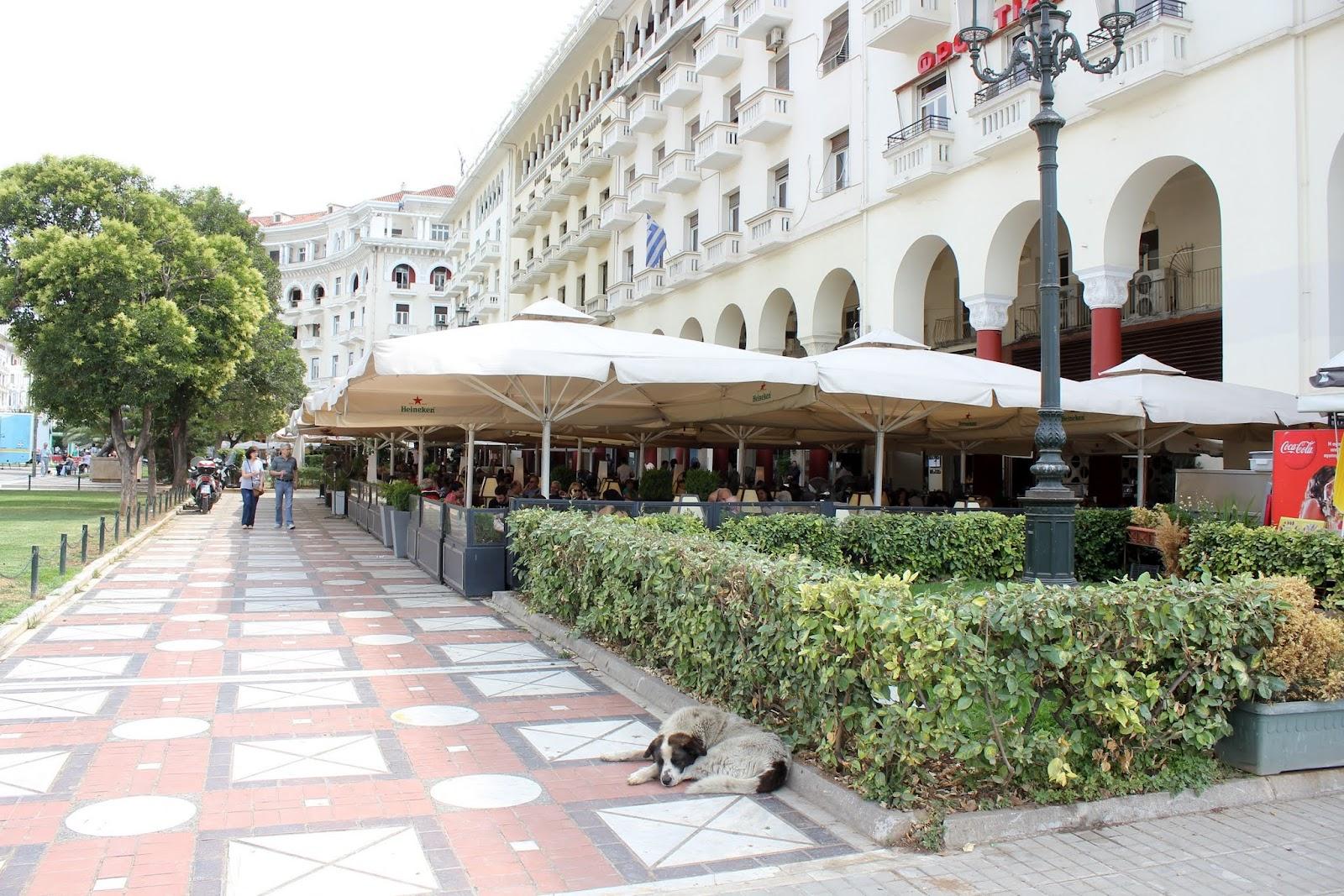Day 19 - 2013-06-12 - Thessaloniki - IMG_0273.JPG