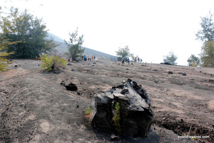 Wisata anak gunung krakatau - Batu dan pasir vulkanik. Kelabu dan panas