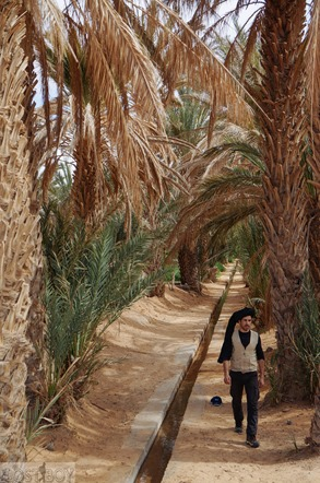 sahara desert-3