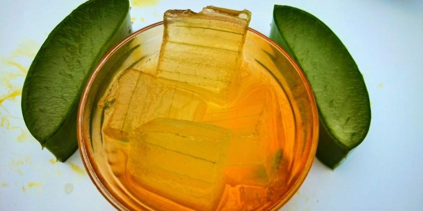 Aloe vera juice with aloe vera by plantsbhh.in