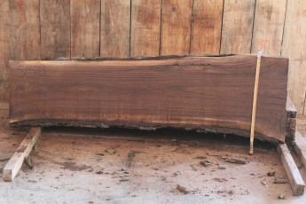 "515 Walnut -3 8/4  x  27"" x  21"" Wide x 8' Long"