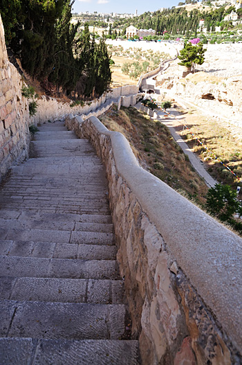 IerusalimMaslini15.JPG