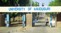 Image result for UNIMAID workers appeal to govt to provide adequate security