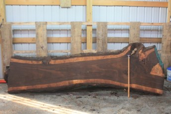 Walnut 296-2  Length 11' Max Width (inches) 36 Min Width (inches) 22 Thickness 10/4  Notes :