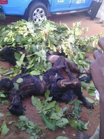 Terrible Fatal Accident Along Kachia Road,Kaduna(Graphic Photos)