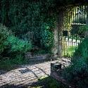 Set Subject 3rd - The Walled Garden Shenley_Debbie Ram.jpg