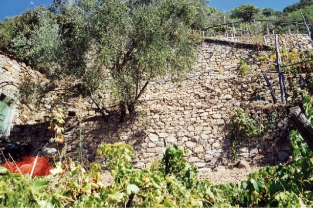 Liguria e dintorni la liguria tenuta assieme dai muri a for Greche per muri