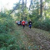 Mountain Lakes Trail Run Fall 2015 - P1040578.JPG
