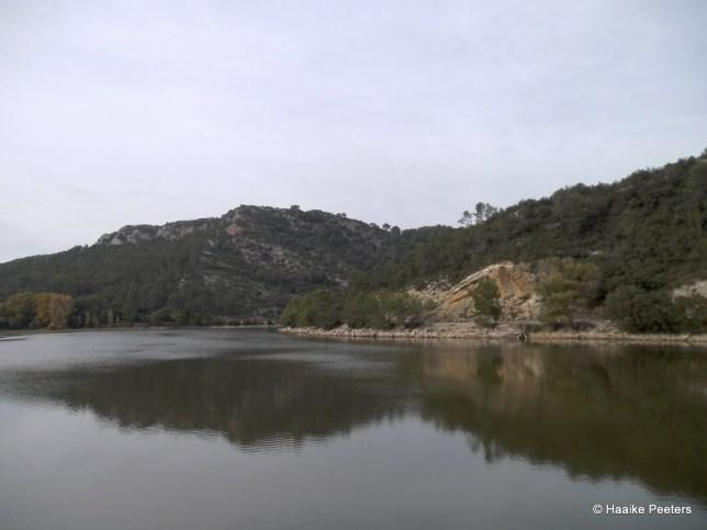 Lac de Carcès (Le petit requin)
