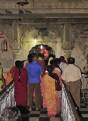 rat worship in India