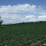 Westhoek 1 en 2 juli 2012 - 2012-07-01%2B12-02-52%2B-%2BDSCF3125.JPG